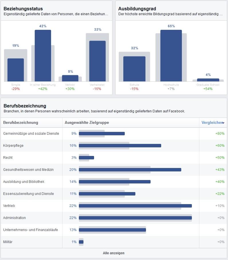 Demografische Informationen der gewählten Zielgruppe