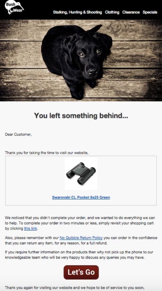 Beispiel einer Follow-up-E-Mail zu einem verlassenen Warenkorb.