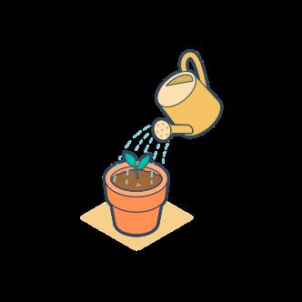Pflanze - Wachstum - HubSpot